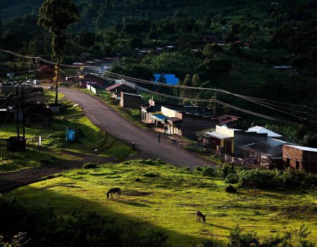 Energy futures: Uganda projects low electricity demand with consequences for hydro-dams